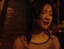 """""""Parasite"""": Dấu son lịch sử của điện ảnh Châu Á"""