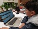 Bộ Giáo dục đề xuất Chính phủ cấp bách tháo gỡ khó khăn cho trường học