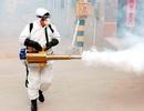 Trung Quốc khử trùng hàng loạt thành phố ngăn dịch corona
