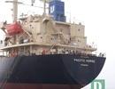 Cách ly 10 thuyền viên tàu hàng từ Hong Kong cập cảng Quảng Bình