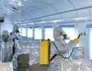 Triều Tiên nêu lý do chưa có người nào nhiễm virus corona