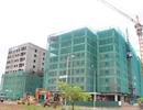 Một dự án nhà ở Hà Nội: Giá gần 10 triệu đồng /m2, bán mãi vẫn chưa hết