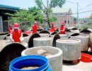 Quảng Bình: Kiếm tiền tỷ nhờ nghề làm nước mắm truyền thống