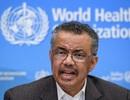 WHO: Thế giới bước vào giai đoạn mới và nguy hiểm của đại dịch Covid-19