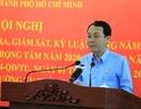 TPHCM: Năm 2019, kỷ luật 409 đảng viên và 17 tổ chức đảng