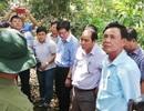 Giữ được hệ sinh thái đặc trưng thì mới còn là U Minh Hạ