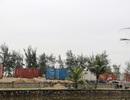 Hà Tĩnh: Rầm rộ dựng hàng trăm container làm nhà trong rừng phòng hộ