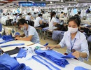 Lao động dệt may, da giày, điện tử làm thêm tối đa 300 giờ/năm