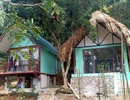 Yêu cầu tháo dỡ công trình trái phép tại danh thắng Quốc gia Kim Sơn