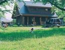 Vẻ đẹp thơ mộng của ngôi nhà gỗ giữa cánh đồng cỏ, ai nhìn cũng muốn ở