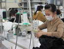 Chưa có thực tập sinh Việt Nam nào tại Nhật Bản bị lây nhiễm Covid-19