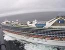 Mỹ phát hiện ổ dịch Covid-19 trên du thuyền chở 3.500 người tại California