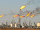 Ả Rập và Nga với vòng xoáy cuộc chiến giảm giá dầu