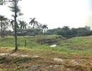 TPHCM: Đề xuất thu hồi dự án khu dân cư Phong Phú 2
