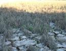 Những giọt nước nghĩa tình tại vùng hạn mặn khắc nghiệt lịch sử
