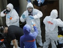 Y tế Mỹ gồng mình chống đại dịch Covid-19, nhiều bác sĩ nhiễm bệnh