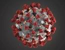"""Chuyên gia tiết lộ cơ chế lây nhiễm """"đặc biệt"""" của coronavirus"""