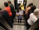 Singapore: Lạ mắt hình ảnh người đi thang máy trong Maybank Tower