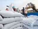 """Do """"nhầm hàng"""", doanh nghiệp được xuất thêm 38.000 tấn gạo tẻ trong tháng 4"""