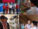 AIA Việt Nam: Đồng hành, sẻ chia với người dân vùng hạn mặn