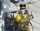 Chủ tịch Bạc Liêu: Không để người bán vé số gặp khó khăn khi tạm dừng bán