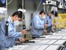 Khối doanh nghiệp Trung Quốc phục hồi mạnh sau thời gian khủng hoảng