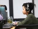 Chọn nghề giữa đại dịch: Công nghệ thông tin nóng hơn bao giờ hết!