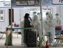 Hàn Quốc sắp vô hiệu hóa tạm thời toàn bộ thị thực ngắn hạn đã cấp
