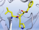 Tìm ra 6 loại thuốc được cho có thể giúp điều trị Covid-19