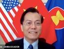 1.000 công dân, du học sinh Việt Nam tại Mỹ đăng ký về nước