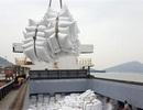 """Tháng 5 sẽ đấu thầu mua lại 182.000 tấn gạo do doanh nghiệp """"bùng"""" hợp đồng"""