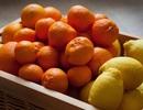 7 siêu thực phẩm tăng cường miễn dịch trong mùa Covid-19