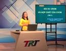 Huế, Hà Nội, Hải Phòng được Bộ GD&ĐT chọn dạy học trực tuyến cho cả nước