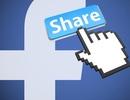 Luật sư giải đáp: Bấm Like, Share tin giả trên Facebook có bị phạt tiền?