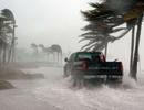 Sự ấm lên toàn cầu khiến cho những cơn bão di chuyển chậm hơn