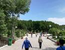 Cà Mau mở cửa đón khách du lịch ngoại tỉnh từ ngày 29/4