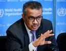 """Số người mắc Covid-19 toàn cầu tăng kỷ lục, Brazil """"nhập nhèm"""" số liệu"""