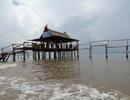 Khách du lịch đến Cà Mau dịp nghỉ lễ 30/4 giảm mạnh