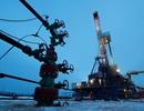 """""""Ông trùm"""" dầu mỏ Trung Quốc suy thoái """"tồi tệ nhất"""" sau nhiều thập kỷ"""