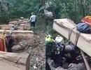 Bộ Nông nghiệp làm việc khẩn với tỉnh Kon Tum về nạn tàn phá rừng xanh!