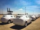 Truy tìm chủ nhân lô xe Nissan nhập khẩu mới tinh bị 'bỏ quên' tại cảng Đình Vũ