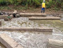 Hồ cạn nước, bất ngờ lộ ra hàng chục hộp gỗ lậu