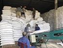 Nhà nước phải bỏ thêm từ 200 đến 270 tỷ đồng để mua lại gạo dự trữ