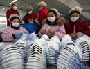 Mỹ rút giấy phép xuất khẩu của hàng chục công ty khẩu trang Trung Quốc