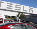 Tesla doạ chuyển nhà máy khỏi bang California nếu không nới lỏng phong toả