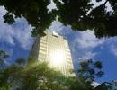 """Hà Nội: Tòa nhà """"dát vàng"""" gây nhức mắt người dân"""