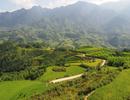 Việt Nam khiến khách nước ngoài chết mê chết mệt với những trải nghiệm này