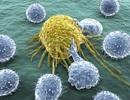 """Phát hiện """"công tắc"""" biến thuốc thông thường thành vũ khí chống ung thư"""