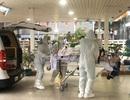 Đã chuyển phi công người Anh nhiễm Covid-19 sang Bệnh viện Chợ Rẫy
