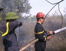 Đà Nẵng: Cháy rừng keo gần sân bay